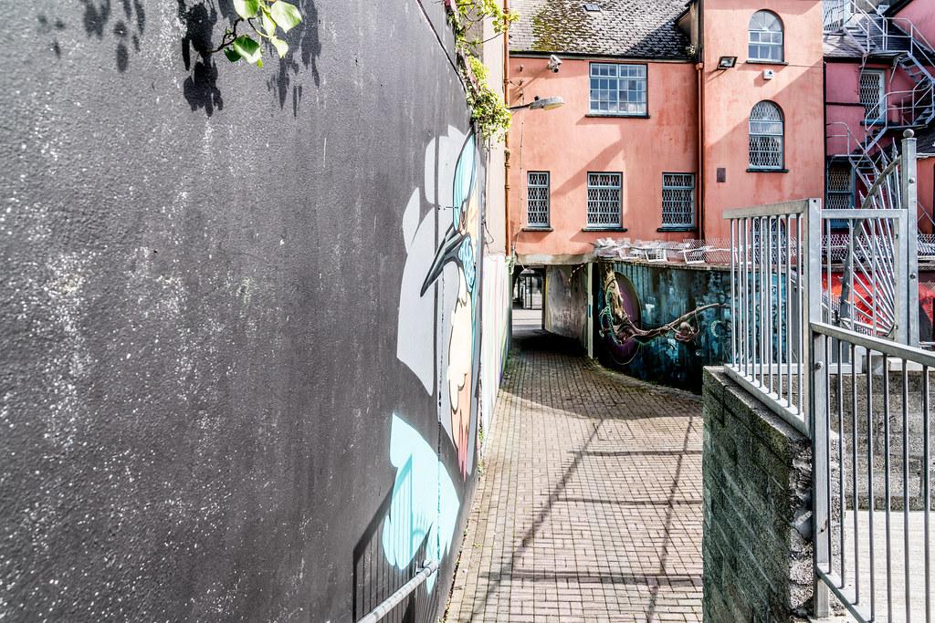 WATERFORD WALLS [AN ANNUAL INTERNATIONAL STREET ART FESTIVAL]-132208