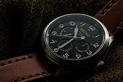 La montre du jour - 01/10/2017 (paflechien33) Tags: nikon d800 sb900 sb700 tamron90mmspf25mf su800