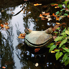 Smiley Frog In A Millpond (redhorse5.0) Tags: frog sculpture water millpond waterplants leaves frogsculpture atlantabotanicalgarden redhorse50 sonya850