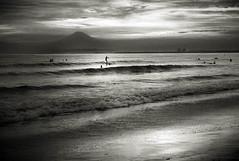 Sunset Beach (kenichiro_jpn) Tags: fomapan400 elmar film m3