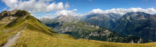Planplatte Panorama