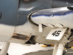 "Grumman F6F-5 Hellcat 18 • <a style=""font-size:0.8em;"" href=""http://www.flickr.com/photos/81723459@N04/36869629775/"" target=""_blank"">View on Flickr</a>"
