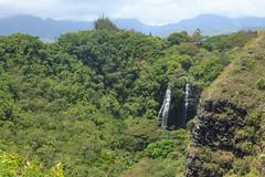 Opaekaʻa Falls (Mike Sirotin) Tags: hi kauai kawaihaudistrict cliffs mountains hāmākua hawaii hawaiʻi waterfall forest hawaiianislands usa cascade kauaʻi ʻōpaekaʻafalls wailuariverstatepark ʻōpaekaʻastream