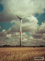 Pusteblume (dermichanos) Tags: windkraft renewable energy erneuerbare energie enercon feld acker korn sonne sonnenuntergang landwirtschaft alpha6000 sony