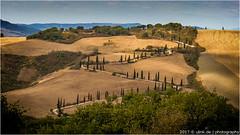 _S (l--o-o--kin thru) Tags: toskana tuscany zypressen italia