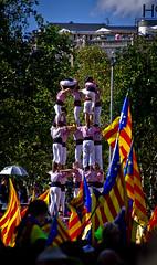 Fem pinya i guanyarem!! / Toghether for a Free Catalonia (SBA73) Tags: catalunya catalonia catalogne catalogna katalonien cataluña каталония 加泰罗尼亚 カタルーニャ州 barcelona independencia independence sobirania llibertat freedom freiheit politics political si yes mani manifestació gent gente people banderes estelades senyera estelada flag flags 2017 catalanrepublic carrer street avenue massive rally 11s 11s2017 anc omnium diadadelsí votar passeigdegracia minyonsdeterrassa castellers colla castells castell humantower strengh spectacular