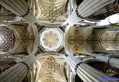 Salamanca (santiagolopezpastor) Tags: espagne españa spain castilla castillayleón salamanca provinciadesalamanca cathedral catedral medieval middleages