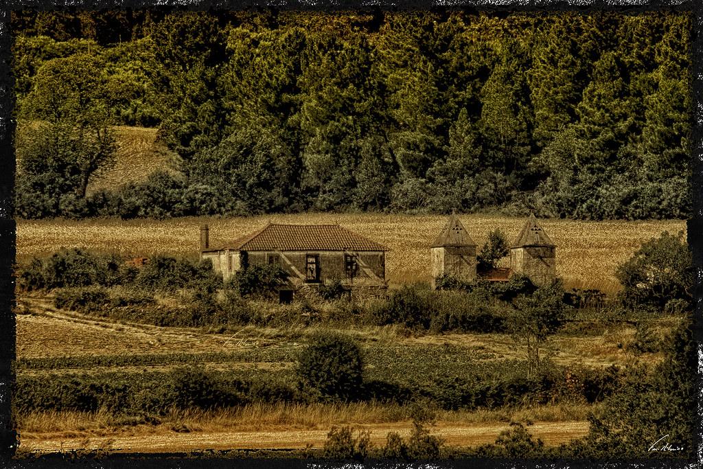1600-cimo-vila (231)