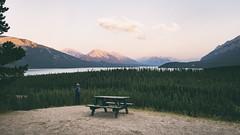Abraham Lake (Erik de Klerck) Tags: sunset sundown green tree trees water lake nature natural forest canada alberta 169 24mm nikon 14g 14 abraham abrahamlake david thompson davidthompson