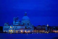 20170908-DSC06181_DxO (Reinhard Voelkel) Tags: labiennale venice venezia italy art kunst biennale biennaledivenezia damienhirst palazzograssi