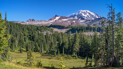 the Payoff (writing with light 2422 (Not Pro)) Tags: mountrainiernationalpark mountrainier mountain ridgeline meadow spraypark hiking forest richborder sonya77