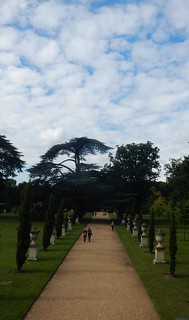 Chiswick House: view from upstairs window