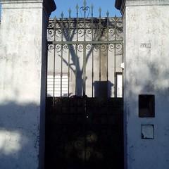 Portal antiguo metal (ireriverside) Tags: proyectopuertas metal lucesysombras puerta portal doorway shadow tree cieloazul zonasur
