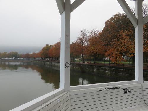 Bodensee à Brégence, Autriche