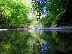 IMG_0014x (gzammarchi) Tags: italia paesaggio natura montagna forli sanbenedettoinalpe gorgoni fiume montone bosco riflesso