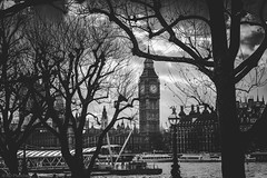 Winter on the Southbank (Anthony P26) Tags: category elizabethtowerbigben england flickrpost housesofparliament london places riverthames street travel greatbritain britain british english travelphotography southbank river watercourse trees branches winter blackandwhite whiteandblack monochrome mono canon70d canon canon1585mm sky clouds whiteclouds tower