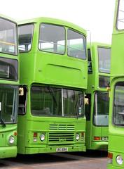 BIG 8085 (markkirk85) Tags: rotherham bus buses dh5054 ex dh 5054 leyland olympian alexander rh brightbus new kowloon motor 121985 3bl64 big 8085 big8085 c157hba c157 hba