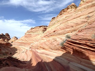 shadows - south coyote buttes