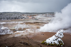Yellowstone National Park - Winter-7 (hotcommodity) Tags: yellowstonenationalpark winter snow ice frozen grandprismaticsprings hotsprings geothermal nature wilderness mist steam clouds grey spring buffalo bison