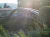 RHE253 Pipeline Bridge over the Alter Rhein River, Höchst, Austria (jag9889) Tags: 2017 20170807 at aut alterrhein archbridge austria bregenz bridge bridges bruecke brücke crossing europe fluss höchst infrastructure oesterreich oldrhine outdoor pipeline pont ponte puente punt rein reno republic rhein rhin rhine rijn river span strom structure vorarlberg wasser water waterway jag9889