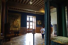 Azay-Le-Rideau, vallée de la Loire, 05/2016 (jlfaurie) Tags: azaylerideau mechas mpmdf jlfr 052016 jlfaurie château castle palace castillo france francia loirevalley valléedelaloire trésor treasure tesoros