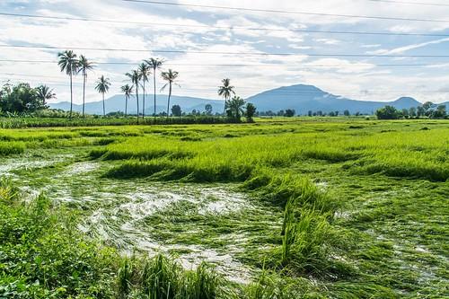 kamphaeng phet - thailande 55