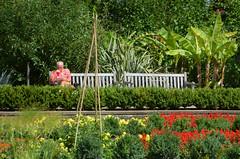 DSC_2364 (Resery) Tags: london hornimanmuseum parks gardens