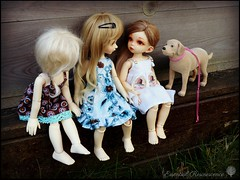 I agree, Mila says, now we need a cat! (Essential Resinescence) Tags: poupee doll resin bjd fairyland ante yosd souldoll ranbi bewithyou strawberry