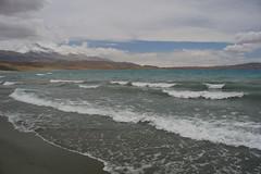 IMG_0882 (y.awanohara) Tags: rakshastal duktso yawanohara ngari tibet may2017