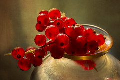 Fruit for Beauty and Health - HMM! (suzanne~) Tags: macro fruit tabletop redcurrants berry food indoor vitaminc health healthy macromondays stayinghealthy