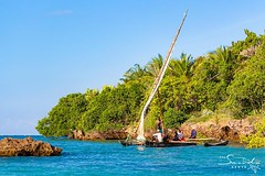Boat trip with traditional ngalawa saiboat