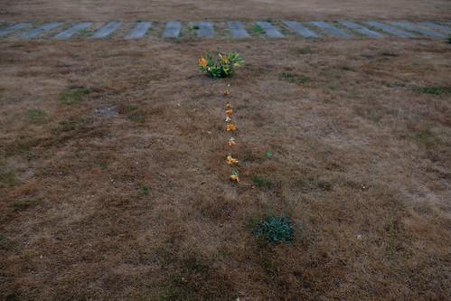 48 dirk kerkhof