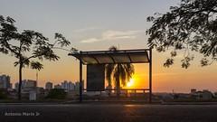 Ponto do Sol (Antonio Marin Jr) Tags: antoniomarinjr sol sunset pordosol fimdodia entardecer pontodesol urbano pordosolurbano