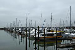 Smoggy (sallyNZ) Tags: challenge smoggy foggy marina boats ansh