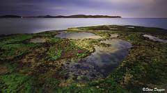 0S1A6744 (Steve Daggar) Tags: pearlbeach seascape landscape longexposure nswcentralcoast gosford woywoy