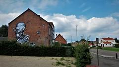 B-Art / Hasselt - 11 aug 2017 (Ferdinand 'Ferre' Feys) Tags: hasselt belgium belgique belgië streetart artdelarue graffitiart graffiti graff urbanart urbanarte arteurbano ferdinandfeys bart hertkore