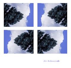 Die Wolkenstraße (eulenbilder) Tags: spielerei fotoseminar geras willypuchner baum wolken landschaft weiss blau grün kombination bildgeschichten