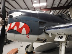 "Grumman F6F-5 Hellcat 3 • <a style=""font-size:0.8em;"" href=""http://www.flickr.com/photos/81723459@N04/36699002372/"" target=""_blank"">View on Flickr</a>"