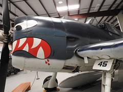 "Grumman F6F-5 Hellcat 3 • <a style=""font-size:0.8em;"" href=""http://www.flickr.com/photos/81723459@N04/36699002372/"" target=""_blank"">View on Flickr</a>"