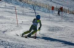 2Y7A1113 Martin Schilkrut, VN