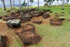 Kukaniloko Birthstones State Monument (Stabbur's Master) Tags: hawaii hawaiianislands hawaiistatepark oahu oahustatepark kukaniloko kukanilokobirthstones kukanilokobirthstonesstatemonument