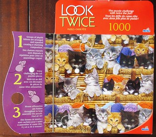 Look Twice: Kittens - box