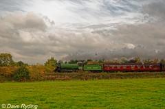 Bongo to the Bard. (Duty Druid) Tags: steamlocomotive britishrailways 61306mayflower 61306 mayflower