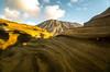 Koko Head (outdoors_n_arkansas on instagram) Tags: kokohead hawaii oahu island bluesky rock texture rogerchavers spsnaturephotography nature earth volcano erosion outside