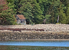 Fishing Shack [Explored] (acadia_breeze4130) Tags: ottercove maine shack hut rustic fishing cove water rocks cobbles trees leaves green landscape beach outside digital sx60hs karencarlson mountdesertisland