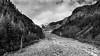 _JJW0665-2-HDR.jpg (JeffWalkington) Tags: bw blackwhite clouds forest landscape mountrainiernationalpark nationalparks nature nikon nikond7000 outdoors snow tokina1224mm trees washington water westernus