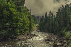 Breitach (Netsrak) Tags: europa europe fluss flus wildbach bach wasser wolke wolken baum bäume austria österreich oberstdorf bayern deutschland de kleinwalsertal berg berge alpen