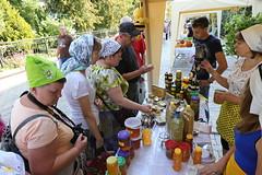 Открытие Святогорской медовой ярмарки (32)