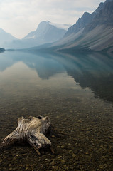 Bow Lake - Stillness (D.Spence Photography) Tags: alberta canada kootenay lake mountains nationalpark nature park wilderness beautiful beauty picturesque scenic water landscape reflection explore glacier