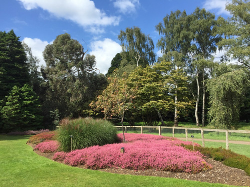 The Heather Garden, Virginia Water